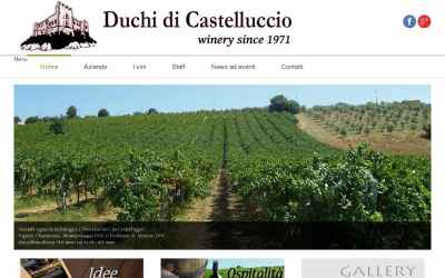 duchidicastelluccio.it